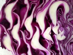 Kiki's Sauerkraut – Your Loving Spoonful to Great Health – Look and Feel Renewed