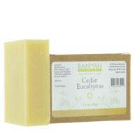 cedar_eucalyptus_soap_with_boxx_large